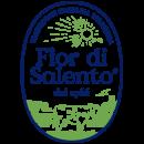 FDS_logo_2018_0-1