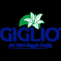 giglio-1